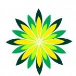 cropped-logo-reconia1.jpg